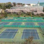 イラコテニスカレッジ緑校