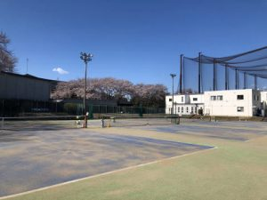 小田急藤沢テニスガーデン