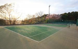 テニスアカデミーTeam YUKA公式サイト