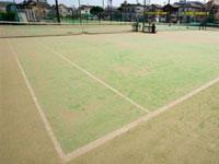 テニスクラブ 大井ファミリー