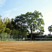 木下テニスクラブ