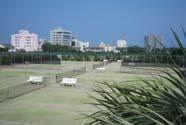 アポロコーストテニスクラブ